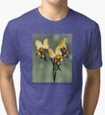 Pansy Orchid Tri-blend T-Shirt
