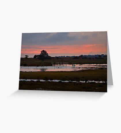 Wetlands at Dusk Greeting Card