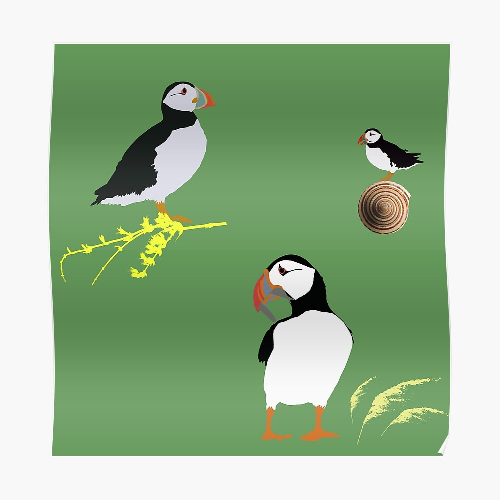 Puffins in green Poster