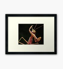 The New Karate Kid ! Framed Print