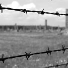 Auschwitz-Birkenau - Poland by Manuel Gonçalves