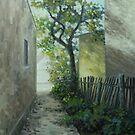 shady walk by edisandu
