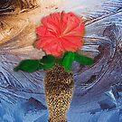 Midnight Rose by Linda Miller Gesualdo