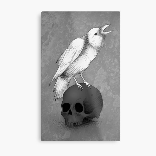 Crow with Skull Metal Print