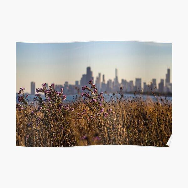 Fall Skyline Poster