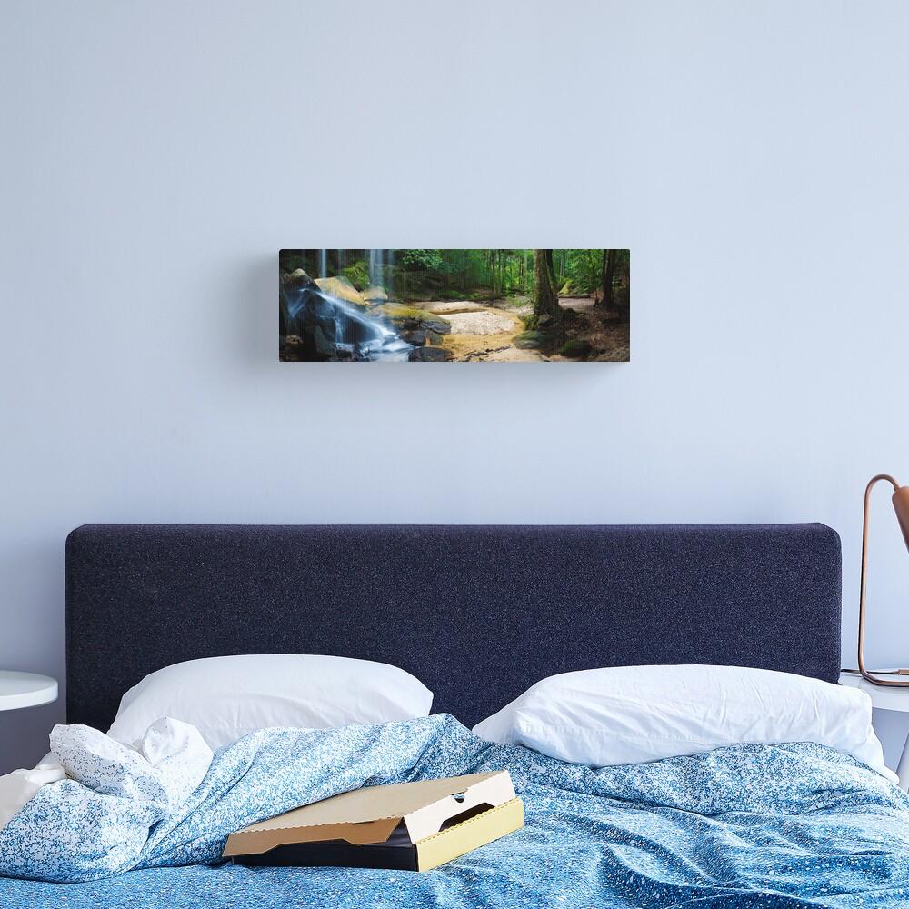 Oakland Falls, Hazelbrook, New South Wales, Australia Canvas Print