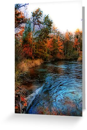 Autumn Reflection In Bear Creek by Shelly Harris
