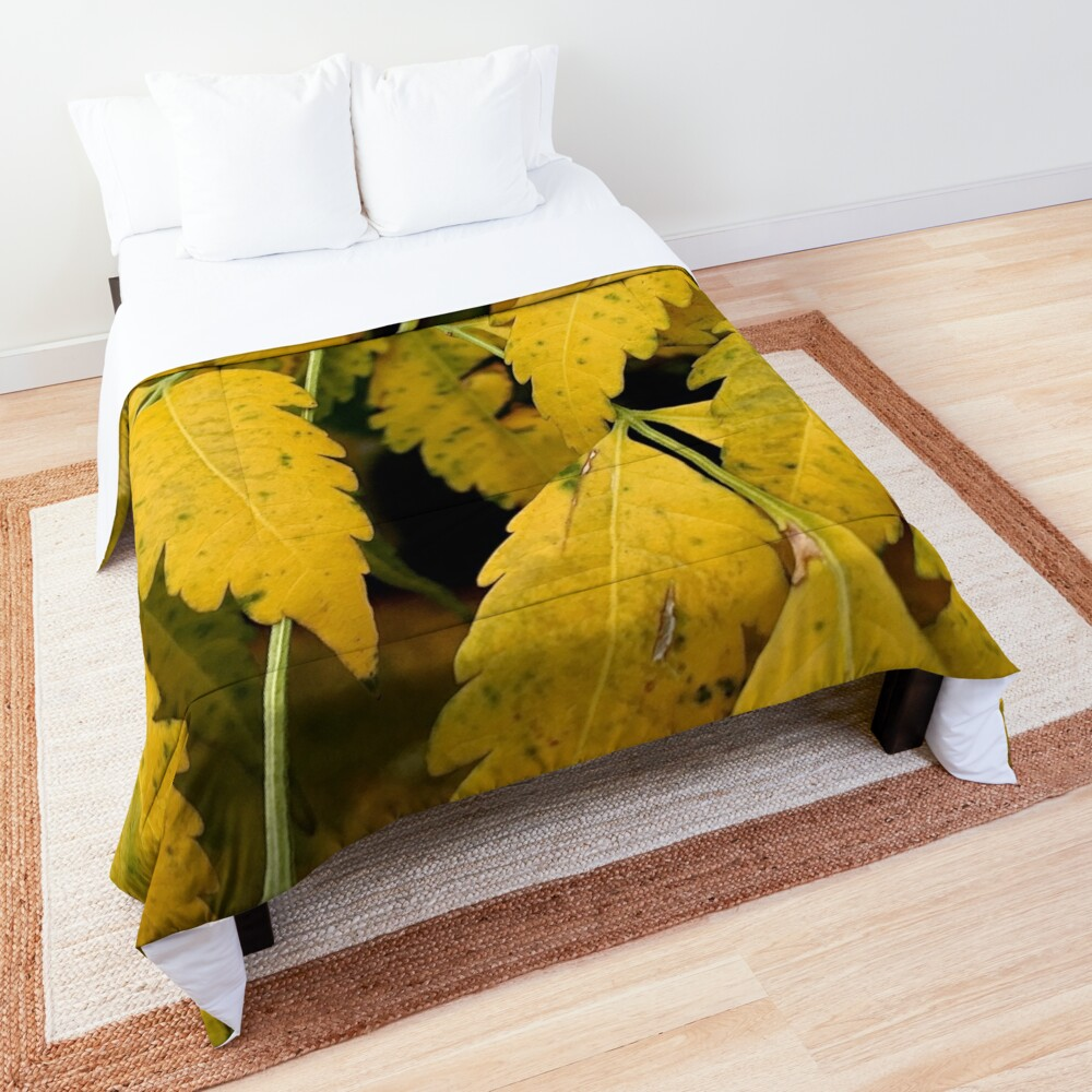Wisteria Leaves in the Fall Comforter