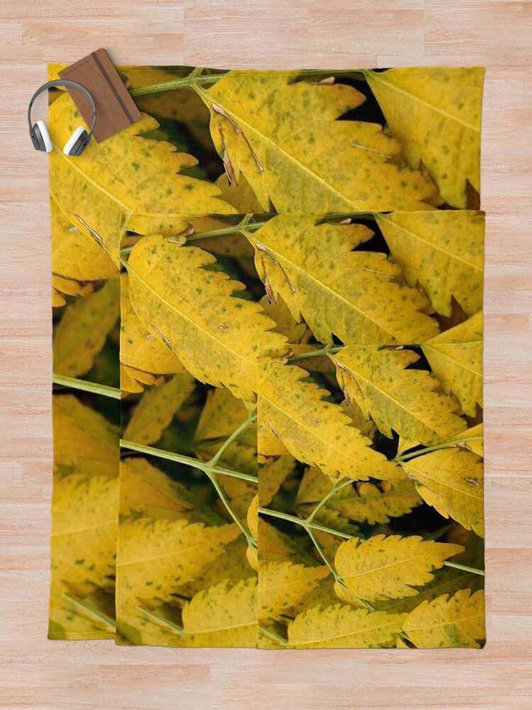 Alternate view of Wisteria Leaves in the Fall Throw Blanket