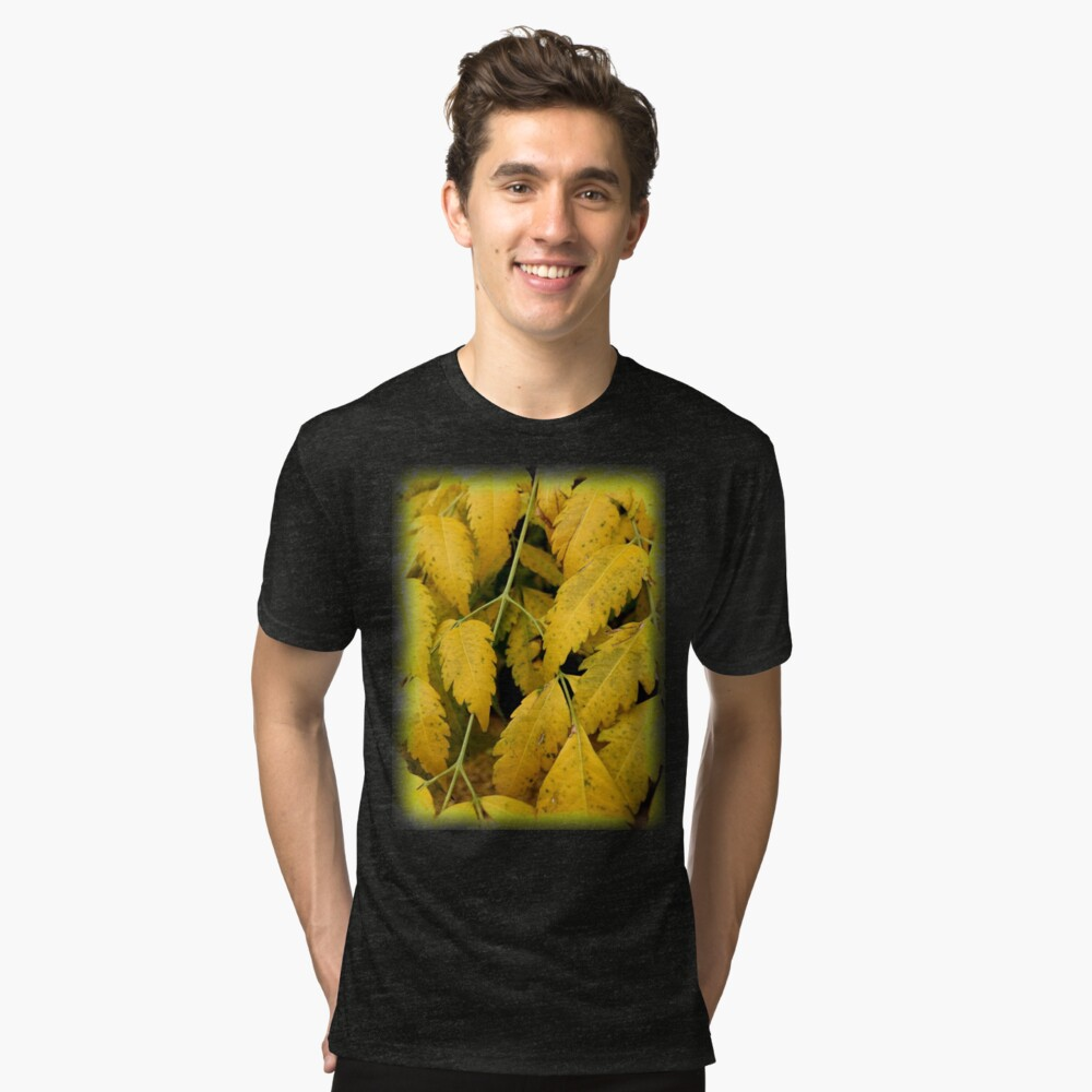 Wisteria Leaves in the Fall Tri-blend T-Shirt