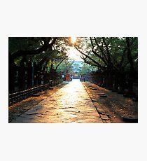 Ueno Park - Tokyo, Japan Photographic Print