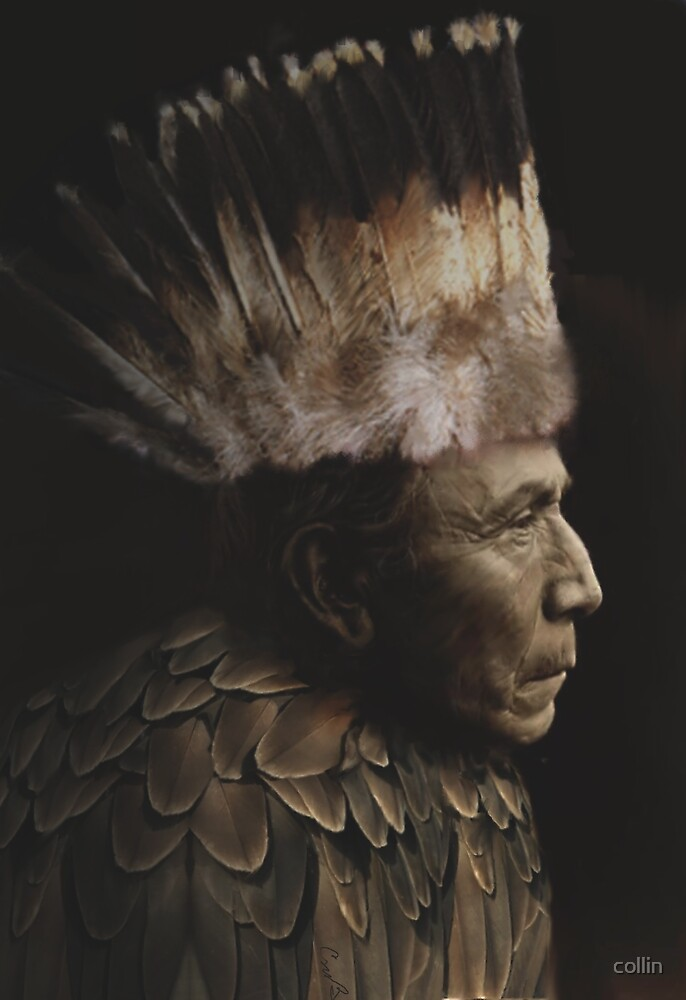 Feathered Chief by collin