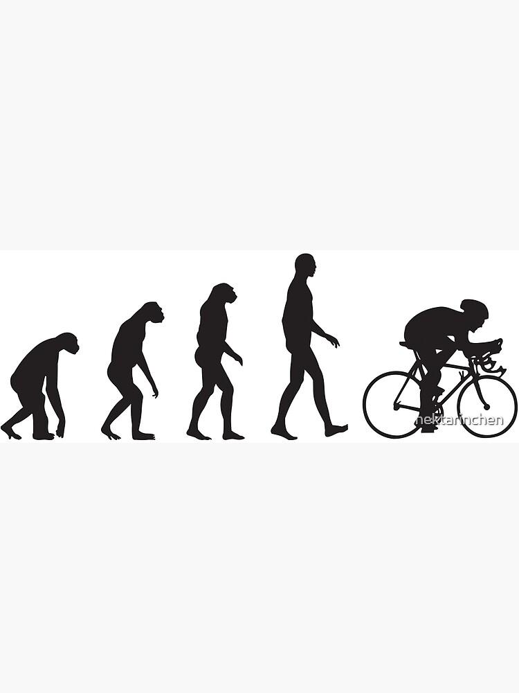 Evolution Cycling by nektarinchen