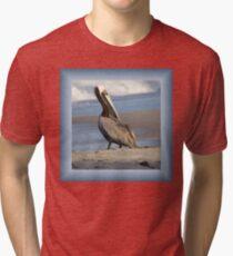 Oceanside Portrait of a Pelican Tri-blend T-Shirt