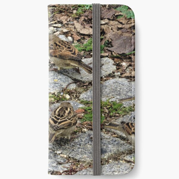 House Sparrows iPhone Wallet
