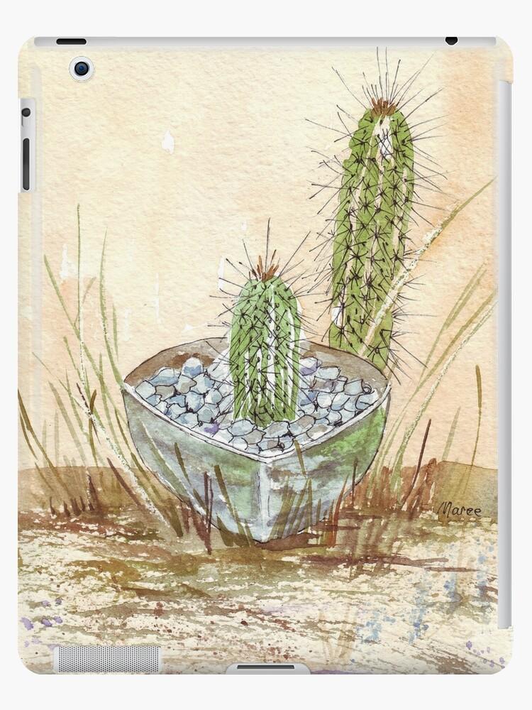 Cactus Trichocereus by Maree Clarkson