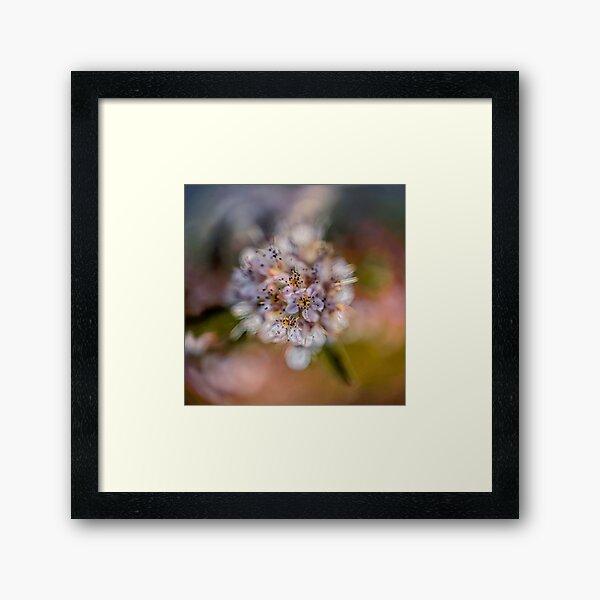Flower Planet #2 Framed Art Print