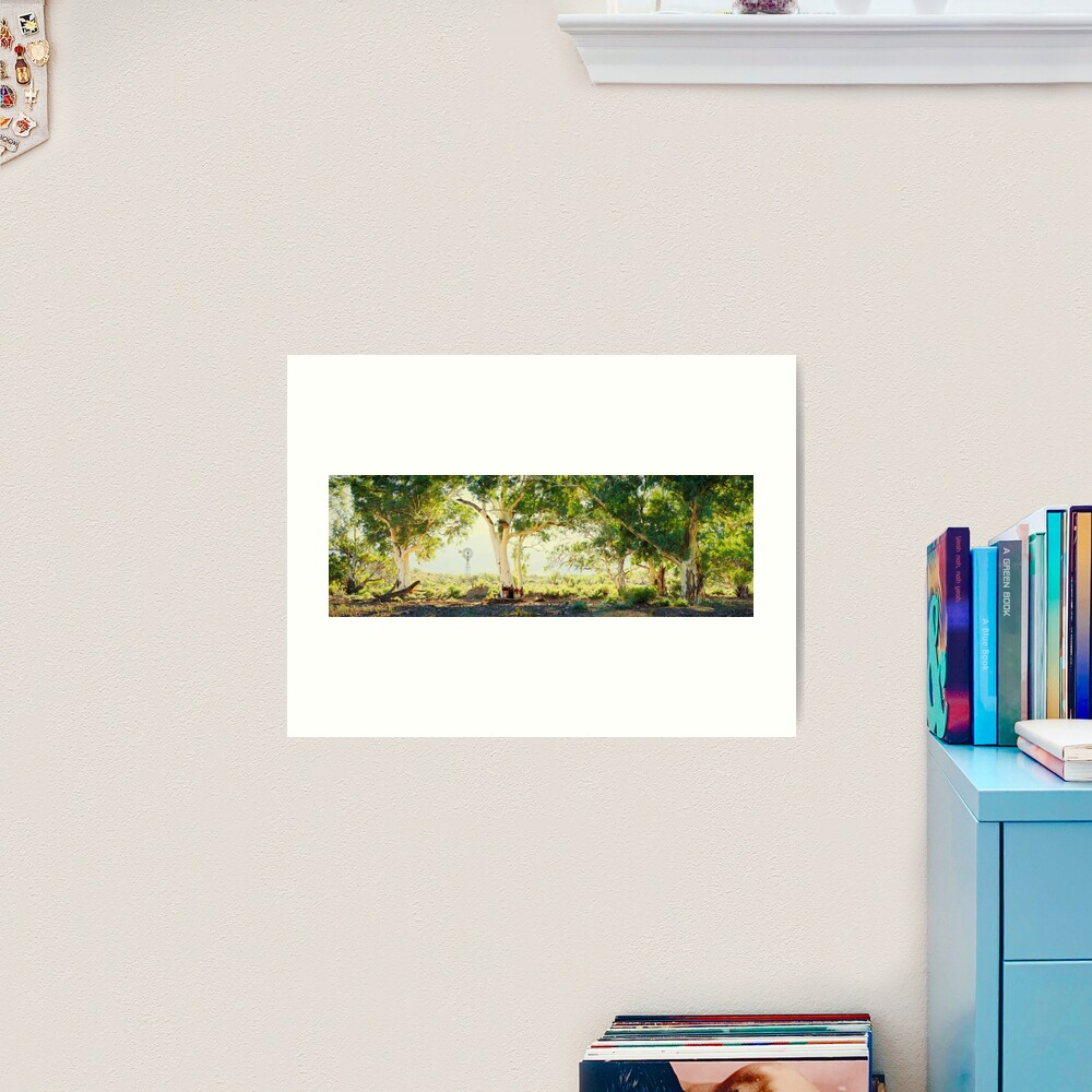 River Gums, Flinders Ranges, South Australia Art Print