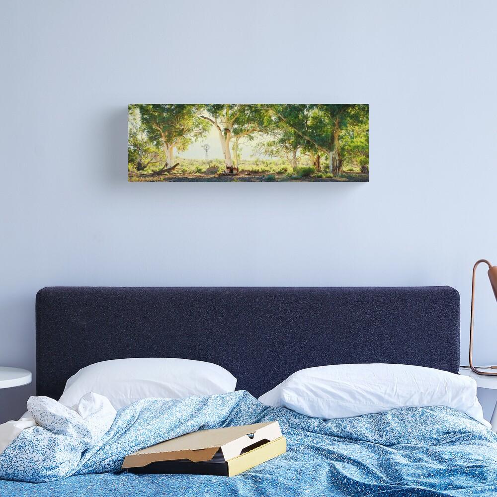 River Gums, Flinders Ranges, South Australia Canvas Print