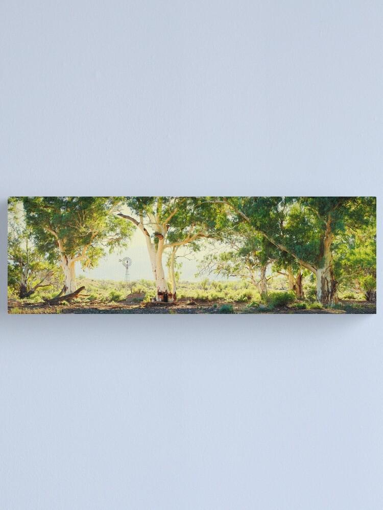 Alternate view of River Gums, Flinders Ranges, South Australia Canvas Print