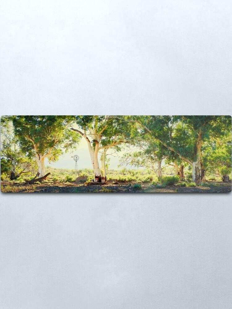 Alternate view of River Gums, Flinders Ranges, South Australia Metal Print