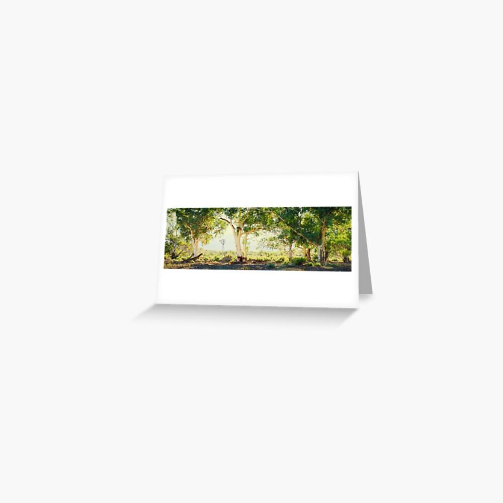 River Gums, Flinders Ranges, South Australia Greeting Card