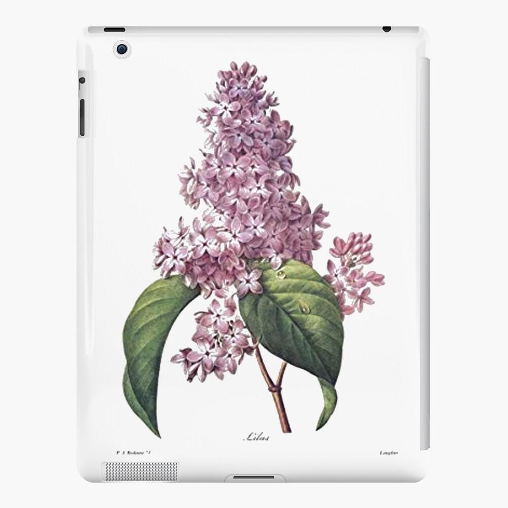 Ejemplo botánico científico de la flor de la lila del vintage Funda y vinilo para iPad