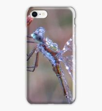 Damselfly and Morningdew iPhone Case/Skin