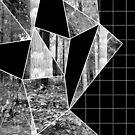 Zerlegung der Natur von Jess de Mol-Ware