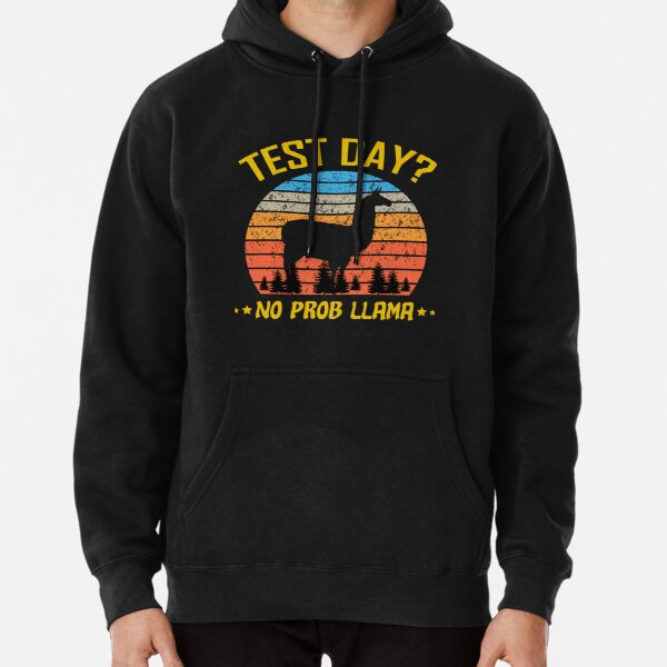 Test Day No ProbLlama Funny Students Unisex Hoodie