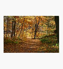 Autumn At Hawthorn Hollow Photographic Print