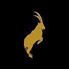 Capricorn - Zodiac Symbols by ys-stephen