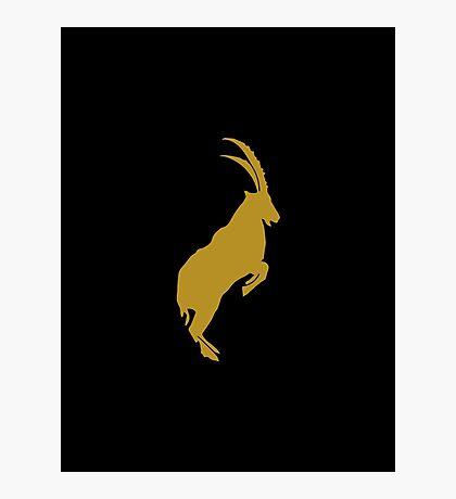 Capricorn - Zodiac Symbols Photographic Print