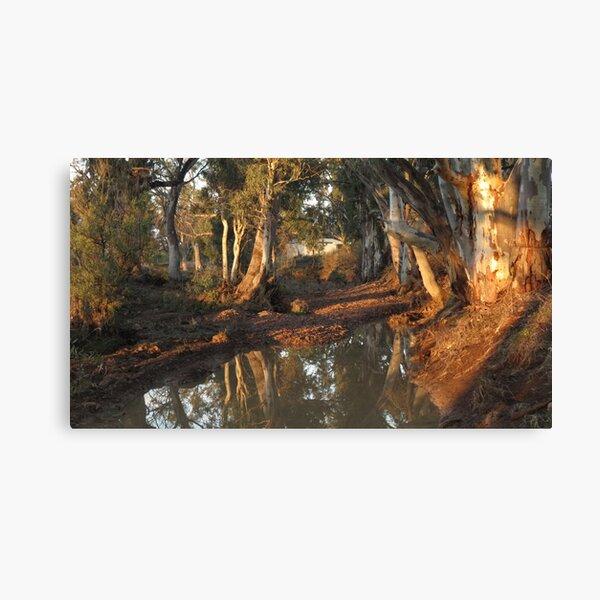 Flinders Ranges Creek Canvas Print