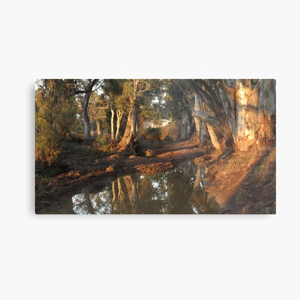 Flinders Ranges Creek Metal Print