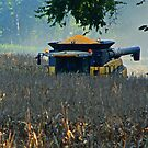 Bringing in the Corn Harvest by Susan Blevins