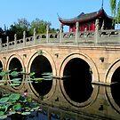 Rainbow Bridge over Lotus-shaded Water  by Brian Bo Mei