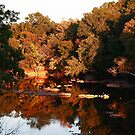 Sunset on the Haw River by mojo1160