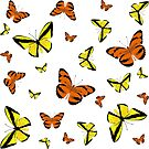 Orange and yellow butterflies by rlnielsen4