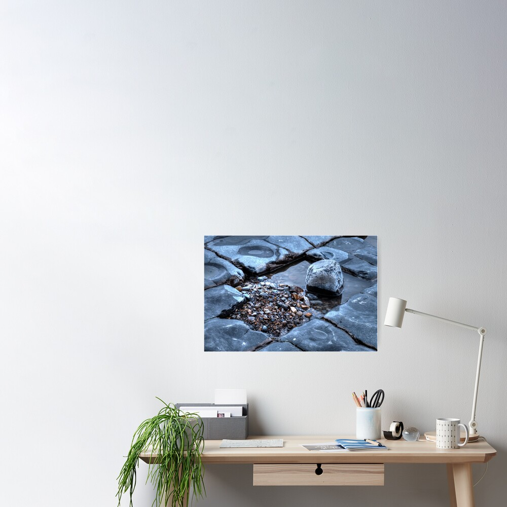 Rock Pool Colour Poster