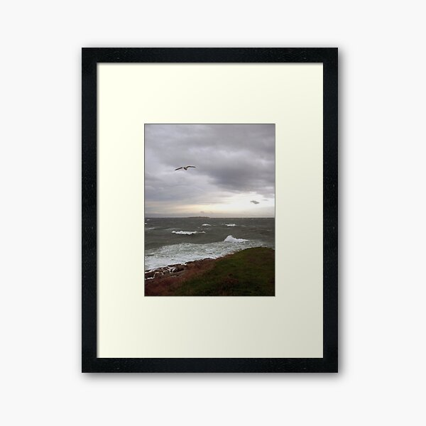 Stormy Clover Point photo Framed Art Print