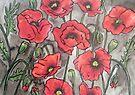 Poppies XII by Alexandra Felgate