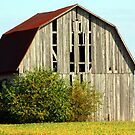 Old Rustic Barn by Dave & Trena Puckett