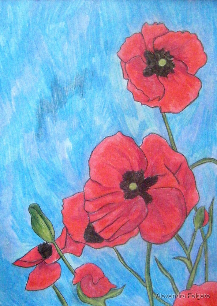 Poppies XIII by Alexandra Felgate