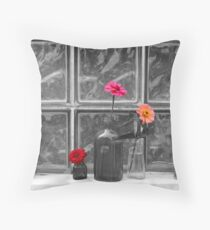 Flowers in Bottles- altered Throw Pillow