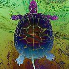 Dream Turtle: fluid acrylic pour art, digital art; surreal painting by kerravonsen