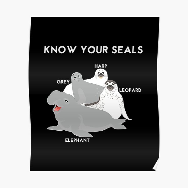 Know Your Seals - Elephant Harp Grey Leopard Poster