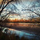 Winter Sunset Waimakariri River by stardusty78