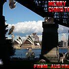 Australian Christmas card 2 by Bernie Stronner