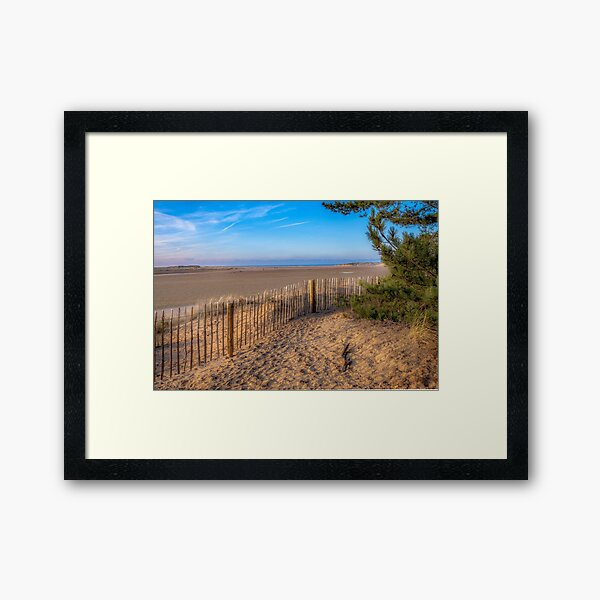 From the Pine Woods to the Sea Framed Art Print